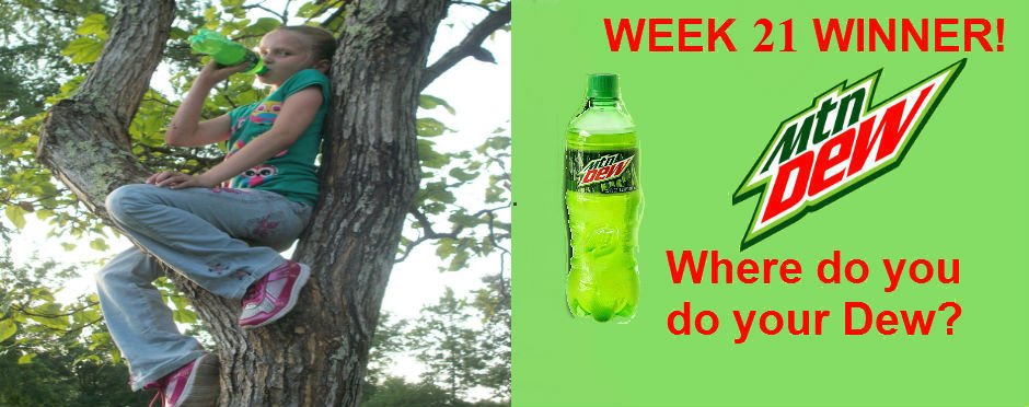 """Where is your Dew Destination?"" Winner"