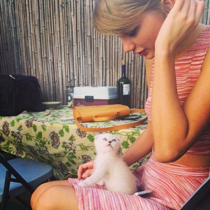 1403141912_taylor-swift-cat-article
