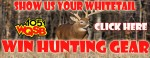 Show Us Your Whitetail Contest