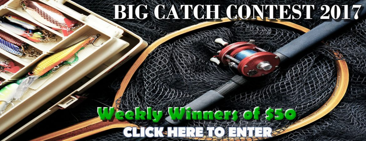 WQSB- Big Catch Contest 2017