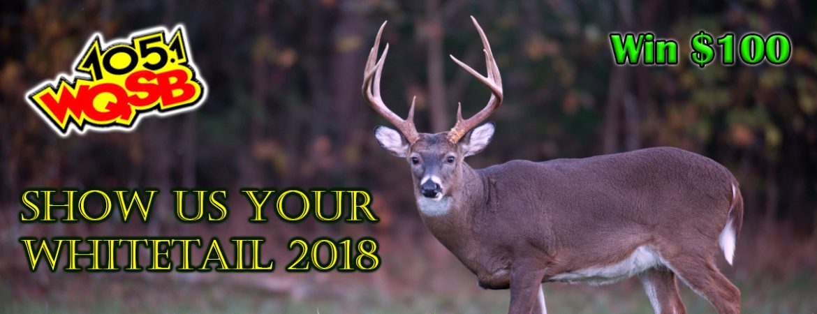 WQSB - Show Us Your Whitetail 2018-2019