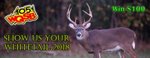 whitetail slider 2018