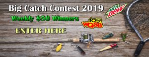 big catch contest 2019 2